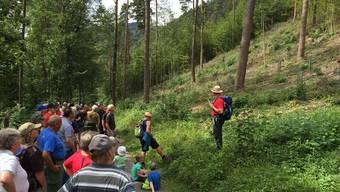 Die Teilnehmer des Waldganges erfuhren viel Wissenswertes