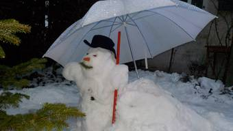 Wenn der Schneemann im Regen steht ...