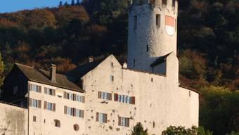 Schloss Neu-Bechburg.