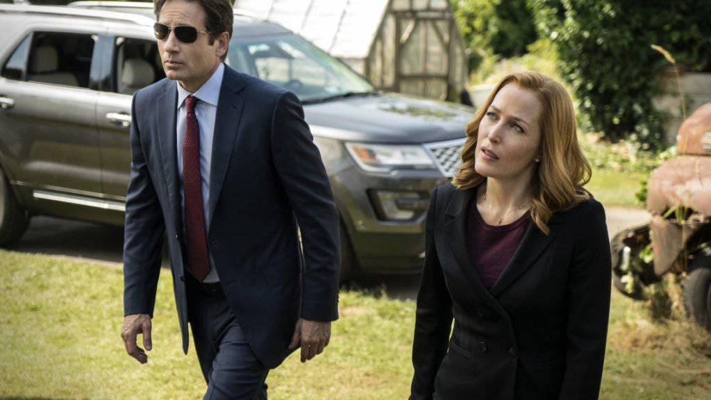 David Duchovny als Fox Mulder und Gillian Anderson als Dana Scully ermitteln wieder über Aliens und paranormale Aktivitäten.