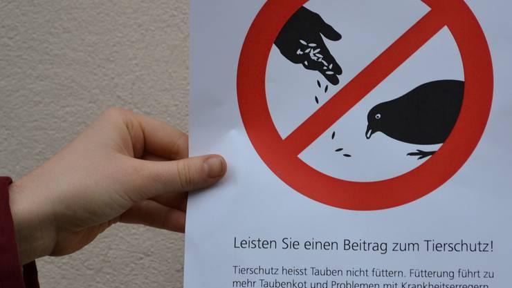Solche Anti-Fütterungs-Tafeln sollen bald die Fassaden von einigen Gebäuden in der Altstadt Bremgarten zieren. sl