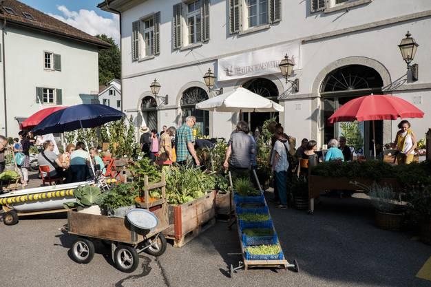 Impressionen von der Gartenserenade auf dem Metzgplatz