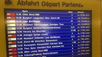 «Komme ich heute noch nach Luzern?», fragte TeleBärn-Moderatorin Sophie Hostettler auf Twitter.