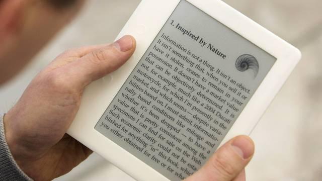 Ein Lesegerät für E-Books (Symbolbild)
