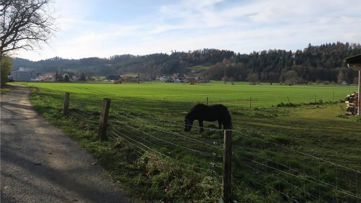 Geht es nach dem Willen der Initianten, sollen auf dem Gebiet Hegmatte in Schöftland keine neue Betriebsgebäude für die WSB entstehen.