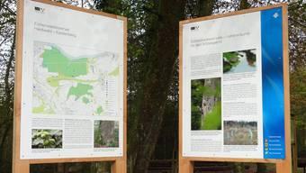 Mit solchen Infotafeln wie hier im Hardwald Kaisten informiert der Kanton über das Eichenwaldreservat.Fotos: sh