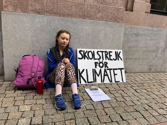Im August 2018 schwänzte die 15-jährige Greta Thunberg die Schule und setzte sich vor das schwedische Regierungsgebäude in Stockholm, um gegen die Politik zu demonstrieren, die zu wenig gegen den Klimawandel unternehme. Sie sollte mit der Aktion eine internationale Klimabewegung in Gang setzen. Der Begriff «Schulstreik fürs Klima» inspirierte Schülerinnen und Schüler weltweit.