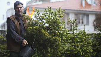 «Mussten auch schon Bäume aussortieren»: Baumvermieter Patrick Bollinger.