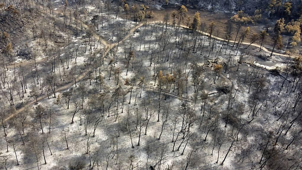 Regen in Griechenland: Lage bei den Bränden deutlich verbessert