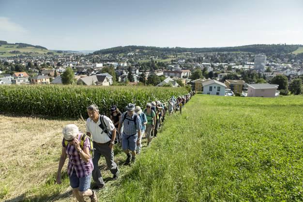 120 Leserwanderer nahmen die Aargauer Königsetappe von Menziken nach Schöftland in Angriff.