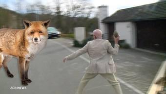 «Ich hatte Panik»: Angriffiger Fuchs jagt Jogger in Eglisau ZH