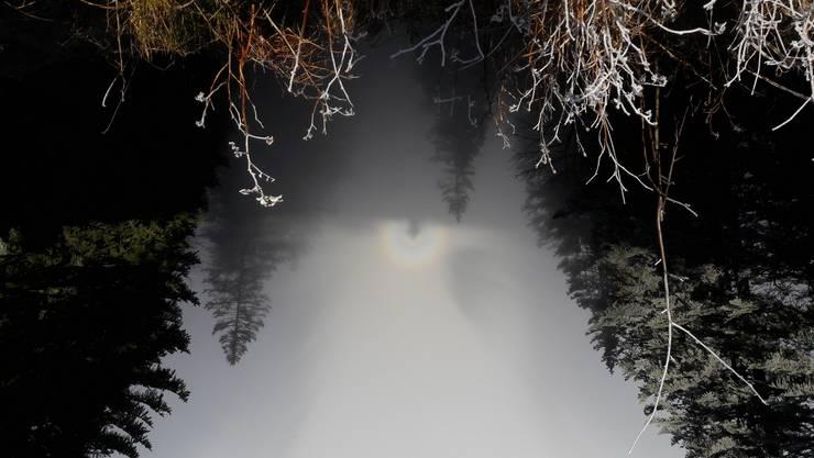 Nebel-Regenbogen auf Rigi-Scheidegg mittendrinn mein Schatten