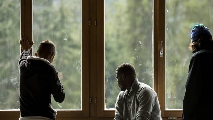 Auch Oberengstringen will Flüchtlingen Arbeit anbieten (Symbolbild).