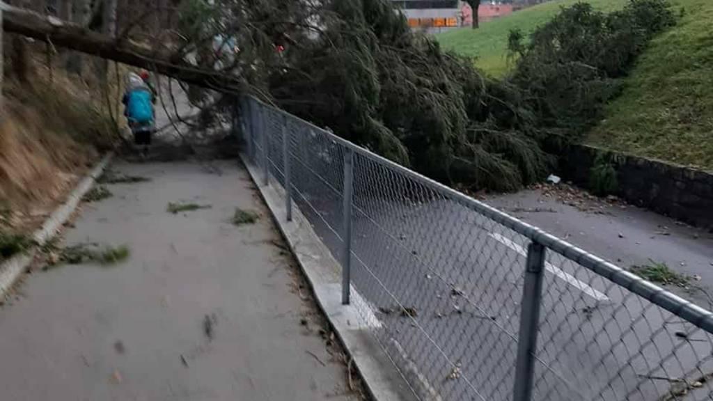 Sturm Sabine: So sieht es in der Zentralschweiz aus