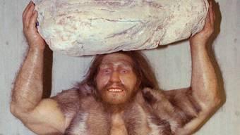 Modell eines Neandertaler-Menschen in einem deutschen Museum