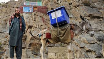 Ein afghanischer Wahlhelfer mit einer Urne auf einem Esel in der nördlichen Provinz Pandschir.