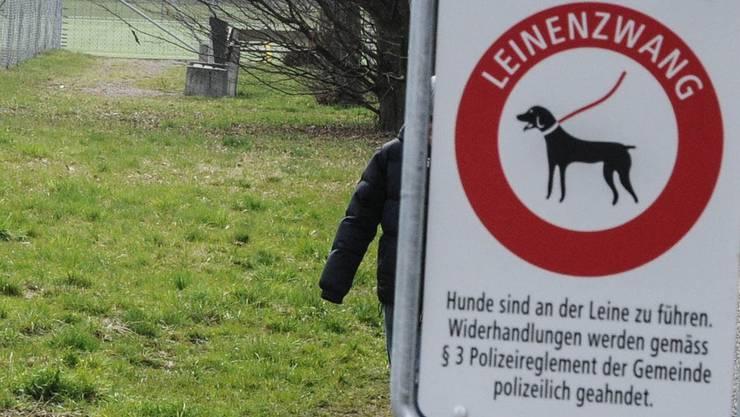 Hunde an die Leine, auch kleine: Das Verbotsschild beim Fussballplatz soll Kinder und die angrenzenden Gärten schützen.toni widmer