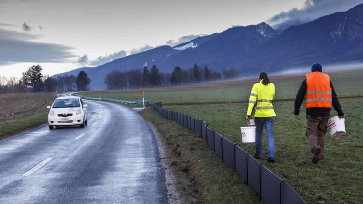 Ausrücken zur Froschrettungsaktion im März 2017 in Lommiswil