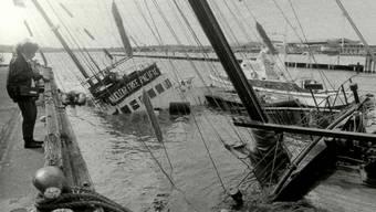 """Von der """"Rainbow Warrior"""" war nach dem Anschlag im Juli 1985 nur noch ein kleiner Teil im Hafen von Auckland zu sehen"""