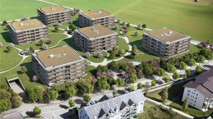 Im Rennen: Areal beim Sportcenter Bustelbach. Bild: zvg