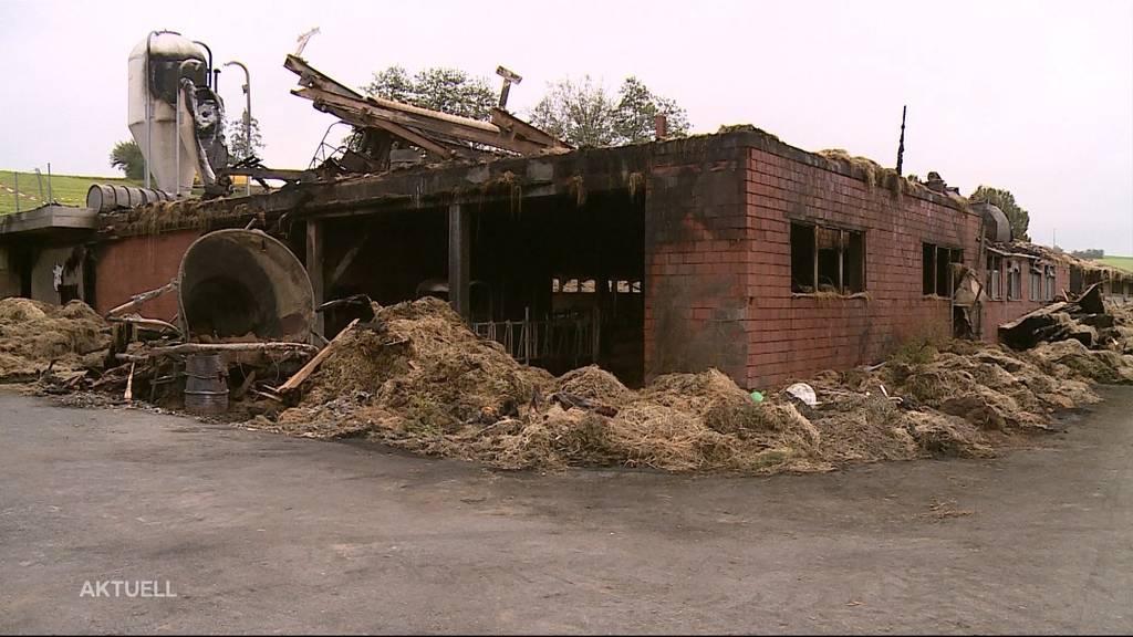 Defektes Kühlaggregat: Brandursache für Scheunenbrand in Müswangen geklärt
