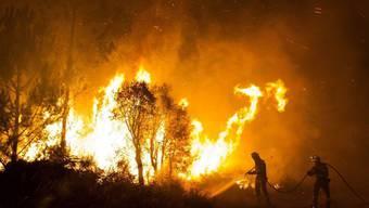 Ein Brand zerstörte in Nordspanien 80 Quadratkilometer Wald, in etwa die Fläche des Zürichsees. Im Bild Löscharbeiten bei einem Brand in Galizien vor zwei Jahren (Archiv)