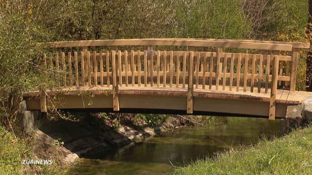 Rickenbach: Lausbuben bauen Brücke über den Dorfbach