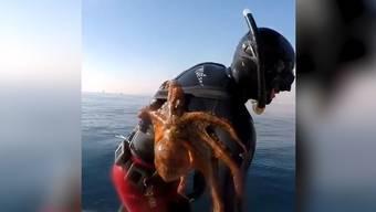 Giuseppe Tortorella ist mit einem besonders anhänglichen Meerestier aufgetaucht.