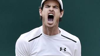 Schrei der Erleichterung: Andy Murray wurde von Jo-Wilfried Tsonga hart gefordert