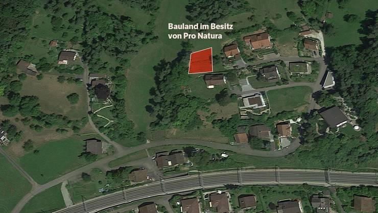 Gekauft, um eine mögliche Überbauung zu verhindern: Das umstrittene Landstück von Pro Natura in Villnachern liegt am Dorfrand am Bergweg.