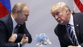 Russlands Präsident Wladimir Putin und US-Präsident Donald Trump wollen sich in einem Drittland treffen.
