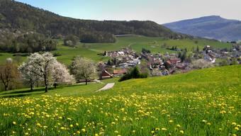 Ein Blick in den Naturpark Thal, hier nach Laupersdorf.