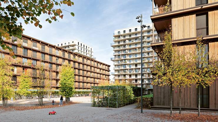 Foto: Andrea Helbling, Arazebra Zürich