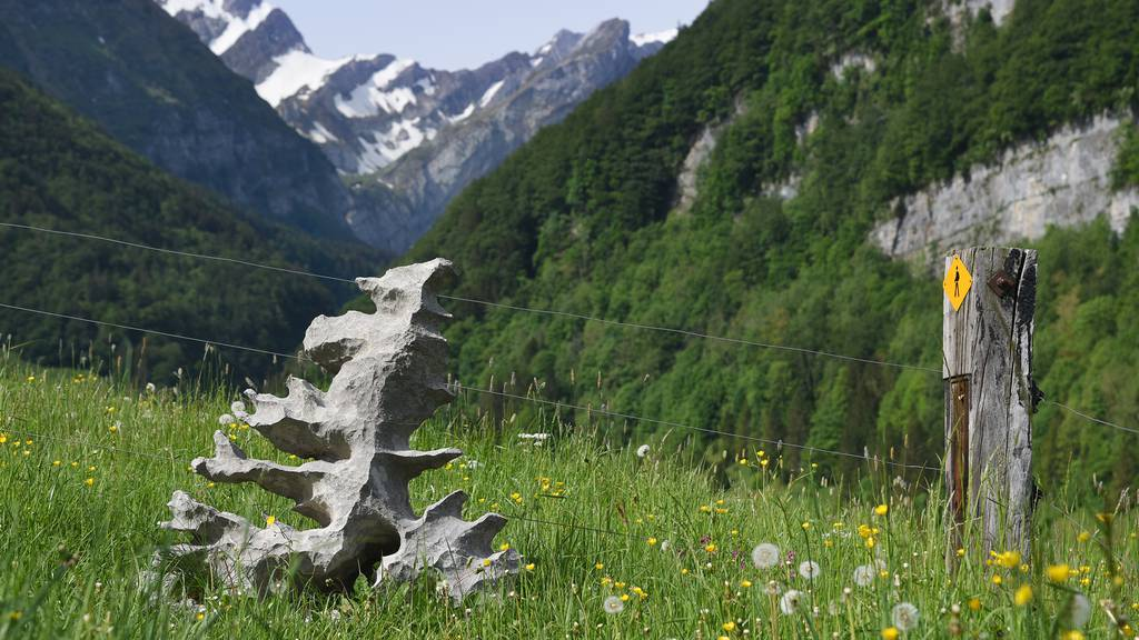 Kein anderer Stein bewegt im Alpstein mehr