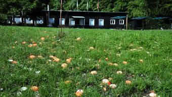 Zur Auflage zur Festlegung der neuen Jagdschiessanlage in Bülach gingen gar rund 4200 Einwendungen ein. (Symbolbild)