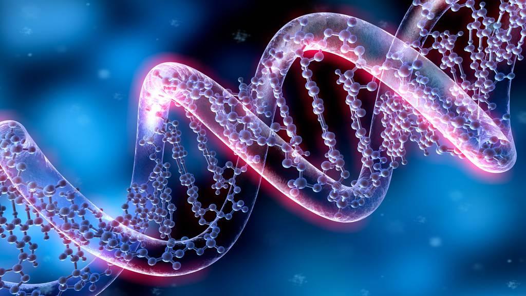 Zuger Polizei: Aufklärung dank eines DNA-Treffers