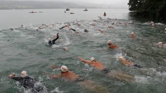 Viel Regen und Leute beim Hallwilersee-Schwimmen