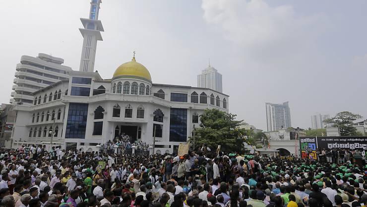 Anhänger des geschassten Ministerpräsidenten Ranil Wickremesinghe demonstrieren ihre Unterstützung vor dem offiziellen Sitz des Regierungssitz in Colombo.