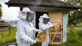 Bienenhaus Honigtraum in Olten