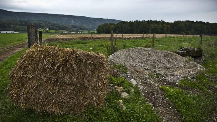 Landwirtschaftsland, Blick in Richtung Otelfingen. Gegner der Deponie befürchten, dass das Landschaftsbild verändert wird. Archiv