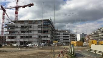 14 der 19 Gebäude der Überbauung «Im Römerpark» stehen bereits. Die Bauprofile zeigen, was auf dem Feld 4 realisiert werden soll.Urs Helbling