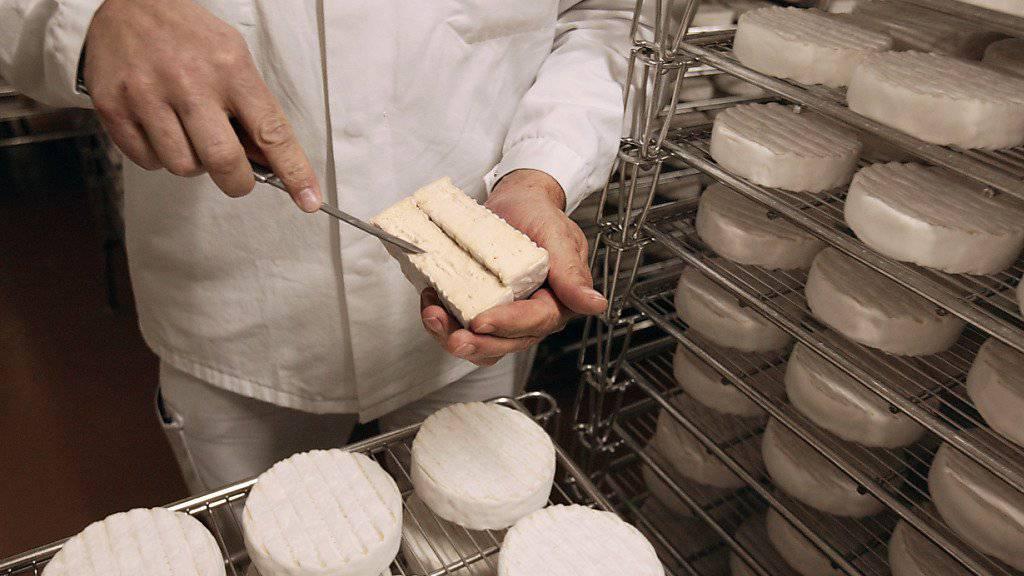 Der Normandie-Camembert darf künftig auch mit pasteurisierter Milch hergestellt werden - nicht mehr nur aus Rohmilch. (Symbolbild)