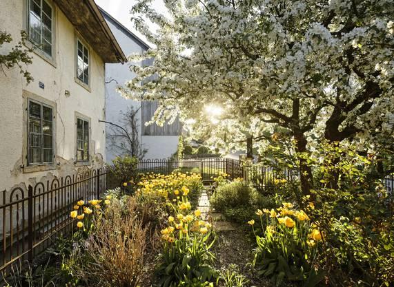 Weitere Impressionen des Dorfes Linn, aufgenommen von Fotograf Michel Jaussi.