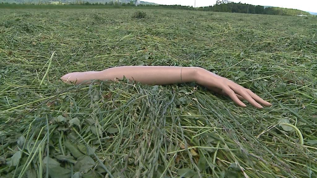 Schaufensterpuppe wird vom Feld eines Bauern gestohlen