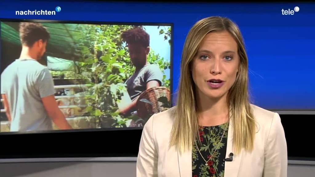 Fazit Flüchtlinge bei Bauern