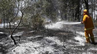 Feuerwehr setzt Schaum gegen Schwelbrände ein