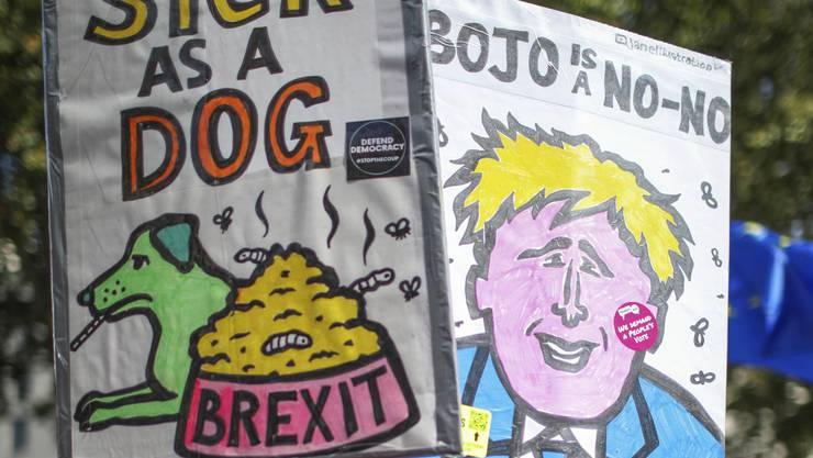 Anti-Brexit-Briten protestieren vor Premier Johnsons Amtssitz in London.