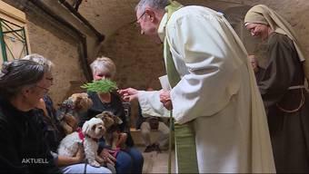 Ins Erlinsbacher Kloster luden am Samstag drei Nonnen für eine Haustiersegnung ein. Fast 20 Vierbeiner nahmen an der Zeremonie teil und erhielten den Segen Gottes.
