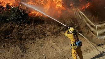Waldbrände in Kalifornien (Archiv)