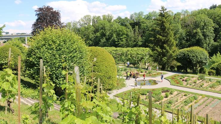 Eine grüne Pracht: Der Klostergarten Wettingen. Zwei Einwohnerräte wünschen sich, dass auch der Begrünung von Dächern und Fassaden Rechnung getragen wird.
